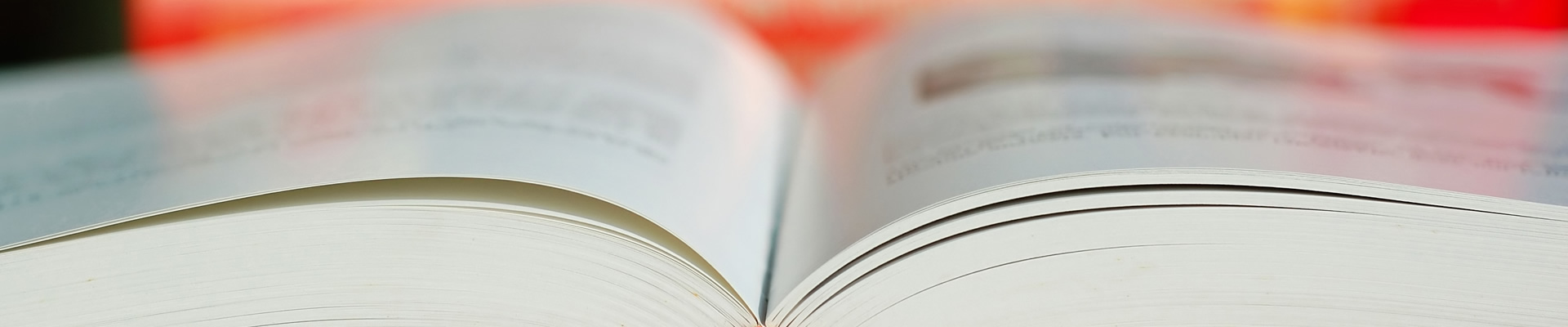 Publicaciones realizadas por tiThink libro en blanco